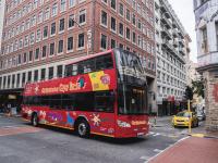 Bus & Tram Tours
