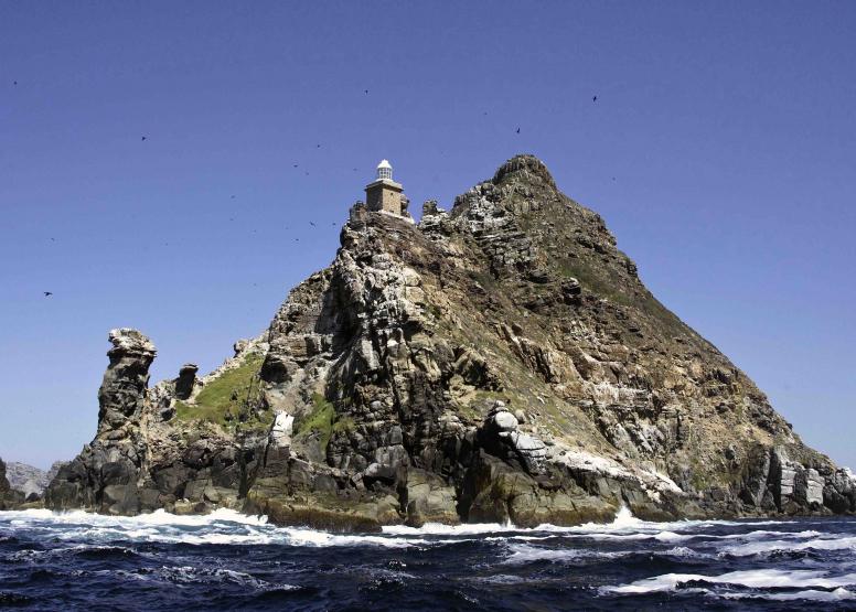 Cape Point Cruise image 8