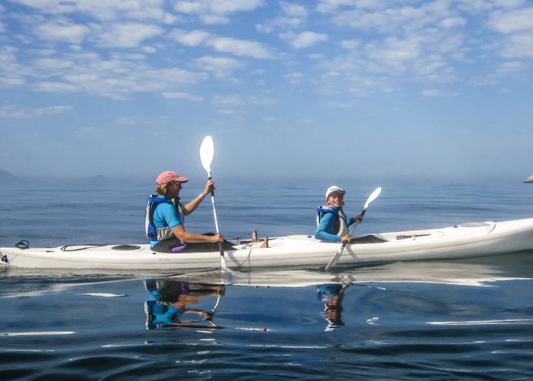 Penguin Kayak Trip image 5
