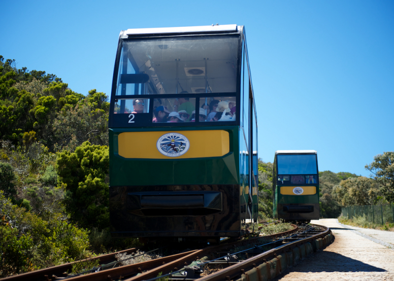Cape Point Funicular - One Way Ticket - Down image 11
