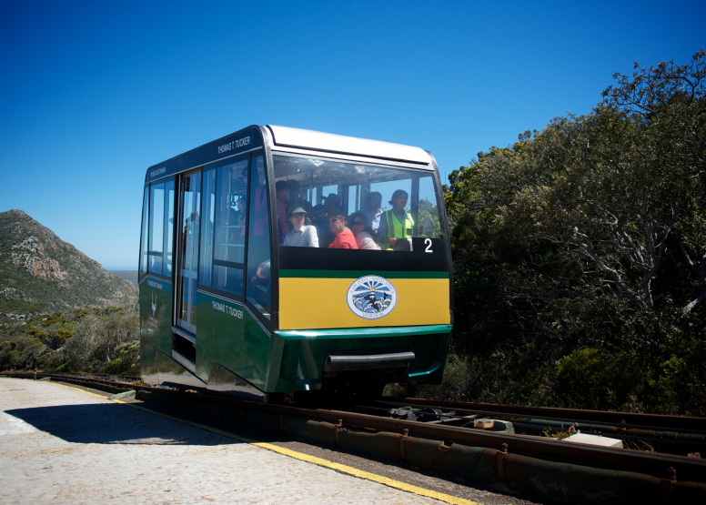 Cape Point Funicular - One Way Ticket - Up image 10