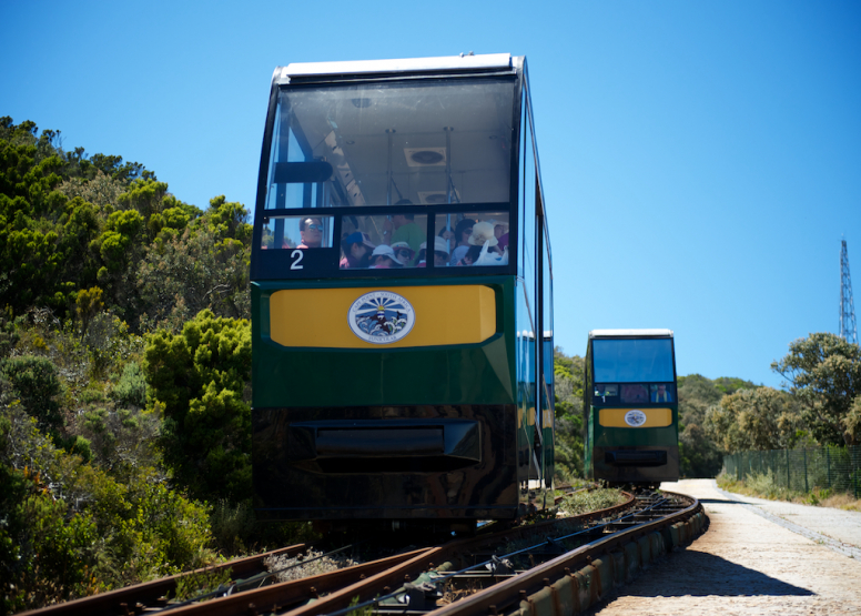 Cape Point Funicular - One Way Ticket - Up image 11