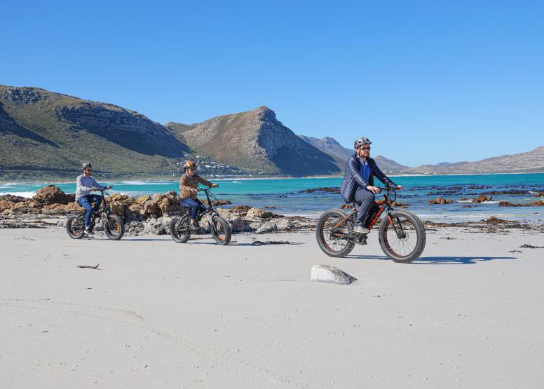 Electric Bike Cape Peninsula Tour image 4