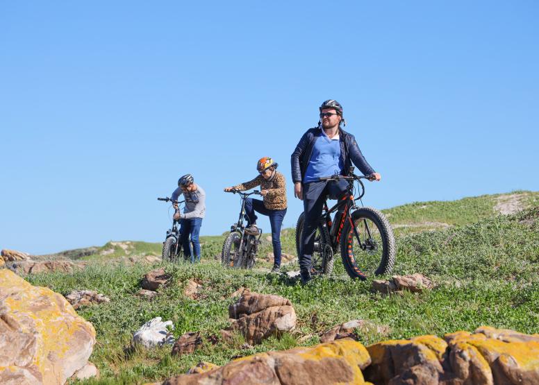 Electric Bike Cape Peninsula Tour image 5