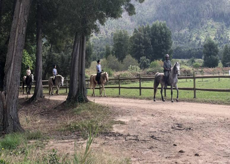 1 Day Wine Farm Trail image 6