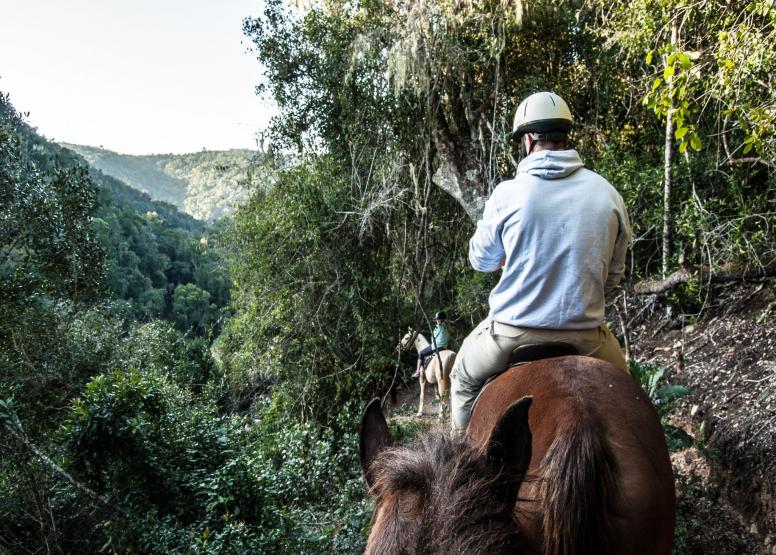 1 Day Picnic Trail - Horseback image 2
