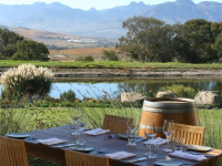 wine estate, wine tasting, wine tours, hop on hop off bus, stellenbosch, cape winelands