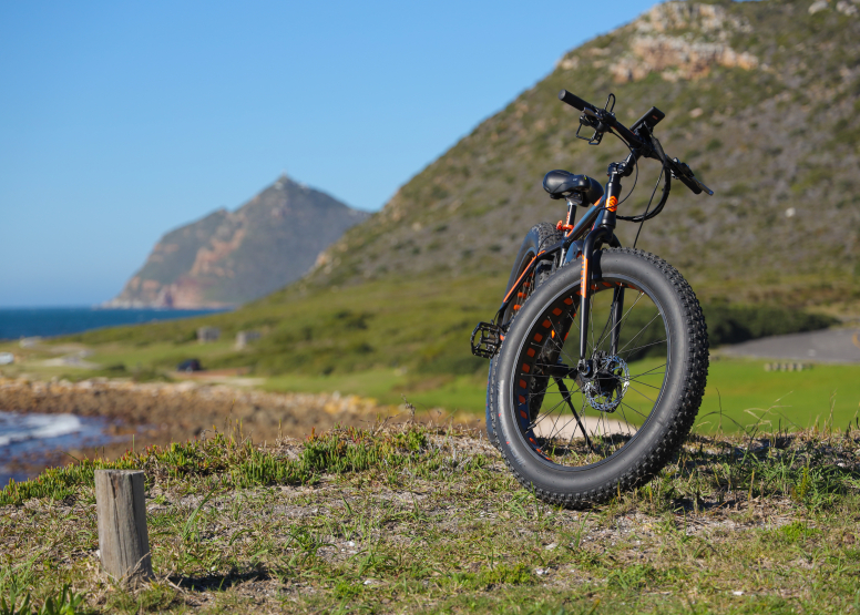 Electric Bike Cape Peninsula Tour image 9
