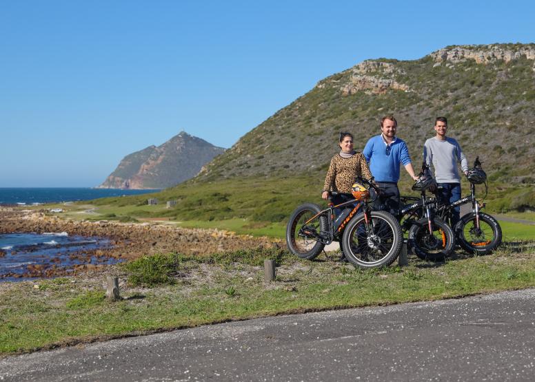 Electric Bike Cape Peninsula Tour image 10