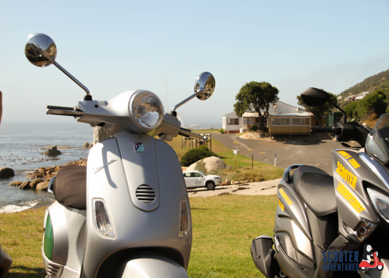 Exclusive Boulders & Cape Point Scooter Tour image 10